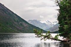 Lago e montagne freddi. fotografie stock libere da diritti