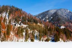 Lago e montanhas congelados Imagens de Stock