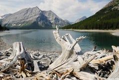 Lago e montanhas Kananaskis foto de stock