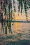 Lago e montes ocidentais sob o por do sol através dos ramos do salgueiro, em Hangzhou, China fotografia de stock royalty free
