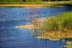 Lago e natura Fotografia Stock Libera da Diritti