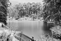 Lago e neve congelati in bianco e nero Fotografie Stock Libere da Diritti