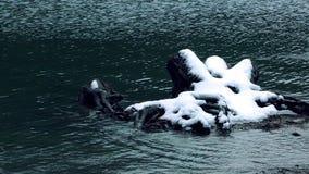 Lago e neve em madeiras video estoque