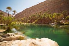 Lago e oásis de surpresa com palmeiras Wadi Bani Khalid no deserto imagens de stock