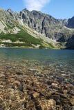 Lago e picco Immagini Stock