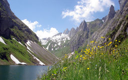 Lago e Ridge svizzeri mountain Fotografia Stock Libera da Diritti