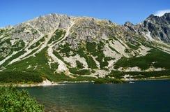 Lago e roccia Fotografie Stock Libere da Diritti
