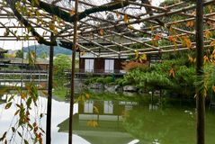 Lago e tempio a Kyoto Fotografia Stock