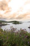 Lago e thisles Donegal Fotografia de Stock