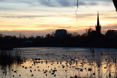Lago e tramonto Fotografie Stock Libere da Diritti