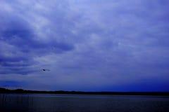 Lago e uccello acquatico immagine stock