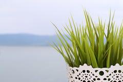 Lago e vaso de flores Imagens de Stock