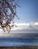 Lago e vulcano Fotografie Stock Libere da Diritti