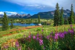 Lago e Wildflowers imagem de stock