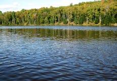 Lago ed alberi Fotografie Stock