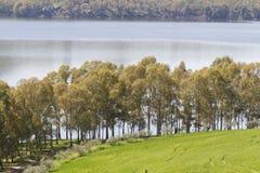 Lago ed alberi in Sicilia Immagini Stock Libere da Diritti