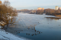 Lago ed anatre di fusione nella città Fotografie Stock