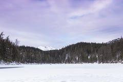 Lago Eibsee en invierno Imagen de archivo libre de regalías