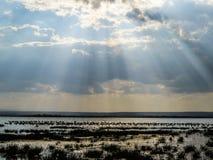 Lago Elmentaita Foto de archivo libre de regalías