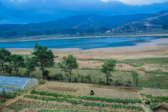 Lago em Aileu fotografia de stock