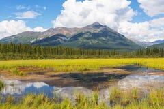 Lago em Alaska foto de stock