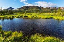 Lago em Alaska fotografia de stock