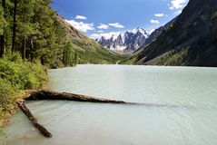 Lago em Altai Foto de Stock Royalty Free