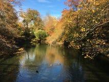 Lago em Central Park Imagem de Stock Royalty Free