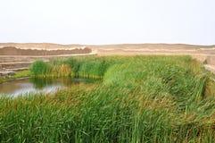 Lago em Chan Chan imagens de stock royalty free
