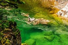 Lago em montanhas de Bucegi, Romênia Bolboci fotografia de stock
