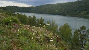 Lago em Sibéria Fotografia de Stock Royalty Free