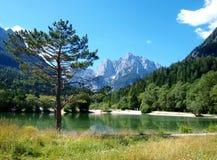 Lago em slovenia Fotografia de Stock