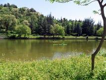 Lago em um parque Imagens de Stock Royalty Free