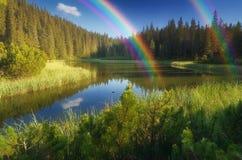 Lago em uma floresta da montanha Foto de Stock Royalty Free