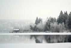 Lago em uma neve Imagem de Stock Royalty Free