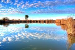 Lago en Alentejo Foto de archivo libre de regalías