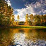 Lago en bosque Foto de archivo