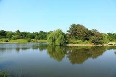 Lago en campo Imagenes de archivo
