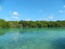 Lago en Cancun foto de archivo libre de regalías