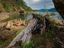 Lago en el agua baja fotos de archivo libres de regalías