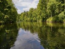 Lago en el bosque Foto de archivo