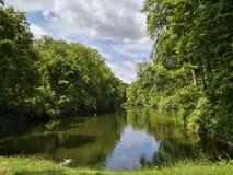 Lago en el bosque Foto de archivo libre de regalías