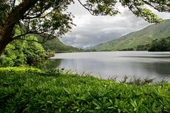 Lago en el castillo de la abadía de Kylemore Imágenes de archivo libres de regalías