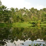 Lago en el lembang imagen de archivo
