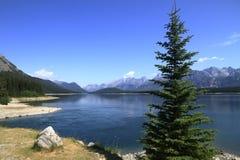 Lago en el país de Kananaskis - Alberta - Canadá Foto de archivo libre de regalías