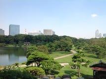 Lago en el parque al lado de rascacielos Imagen de archivo libre de regalías