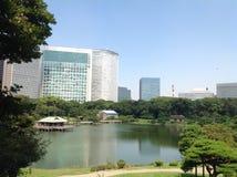 Lago en el parque al lado de rascacielos Foto de archivo