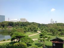 Lago en el parque al lado de rascacielos Fotos de archivo libres de regalías