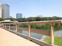 Lago en el parque al lado de rascacielos Foto de archivo libre de regalías