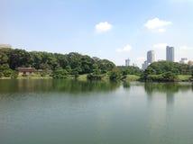 Lago en el parque al lado de rascacielos Imagenes de archivo